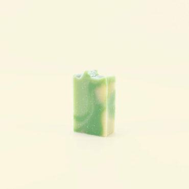 Aloe Vera 370x370 - Shampoing solide - Perle du Mexique - Cheveux normaux à secs