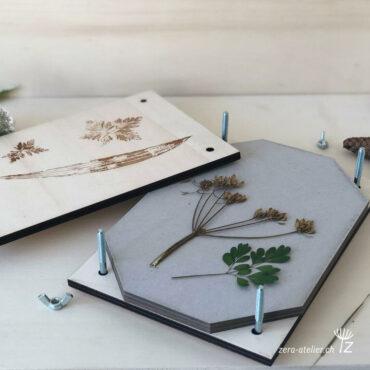 zera herbier bois3 370x370 - Herbier feuilles et fleurs sauvages